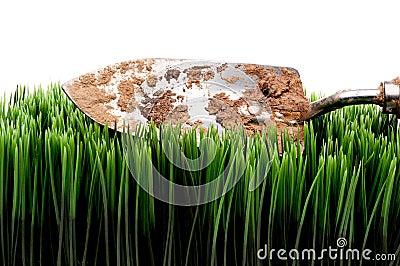 Dirty garden spade on grass