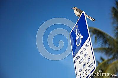 Disabled parking lot sign
