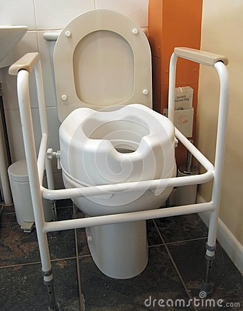 Disabled toilet with handles and raised seat