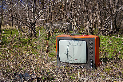 Discarded television set in the forest