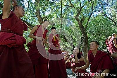 Discusión de monjes Fotografía editorial