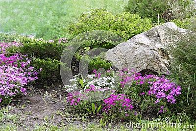Rocce per giardino