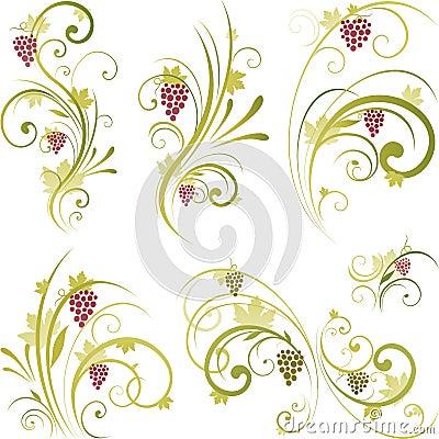 Disegno di motivi del vino