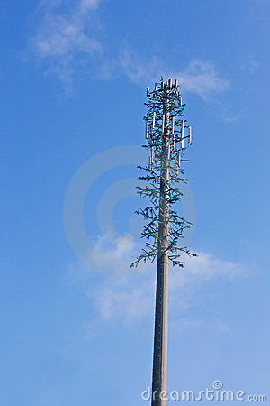 Free Disguised Mobile Phone Tower Royalty Free Stock Photography - 5592887