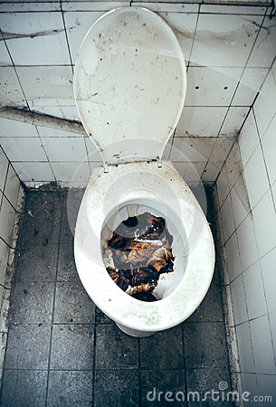 Disgusting Toilet Stock Photo Image 39532853