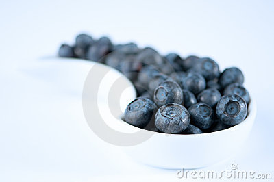 Dish Of Blueberries