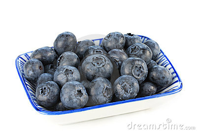 Dish of Fresh Blueberries