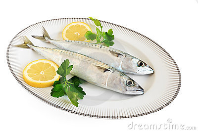 Dish with mackerels