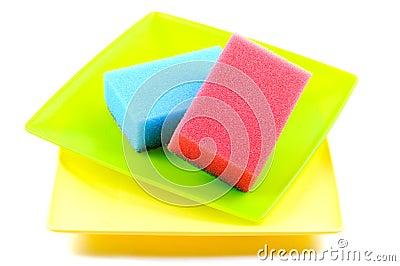 Dish sponge and plates