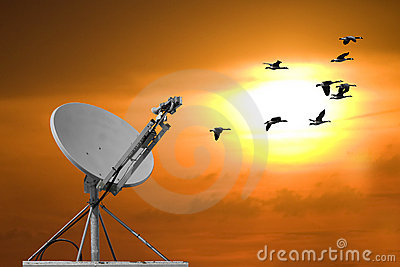 Dish And Sunset