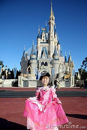 Disney Castle Editorial Image