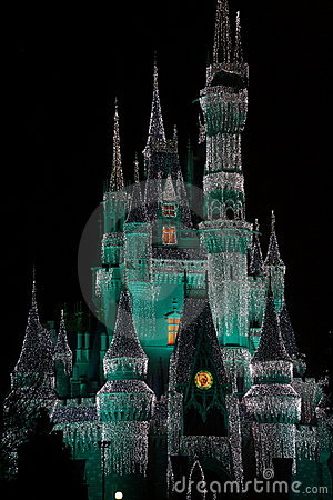 Disney Castle at Night Editorial Image