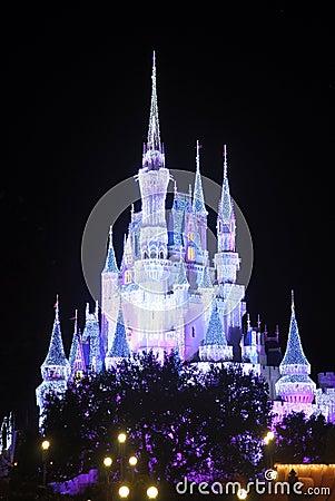 Disney Cinderella Castle at night Editorial Photography
