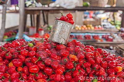 Display of chilli
