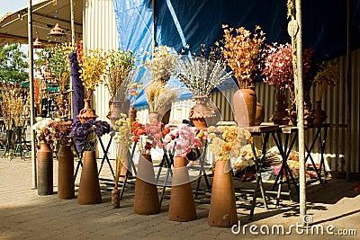 Display of Dry Flowers