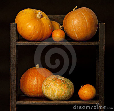 Display of pumpkins on black.