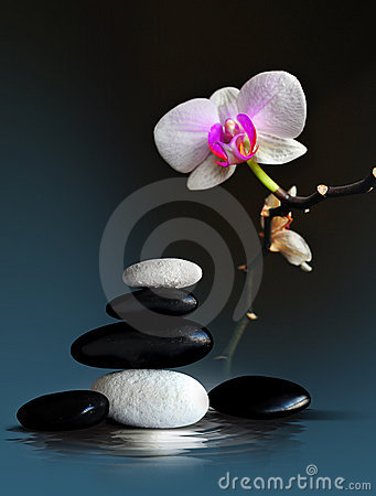 Disposizione di zen della stazione termale