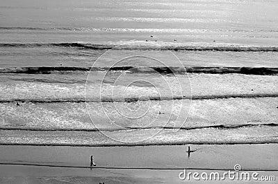Distant Surf