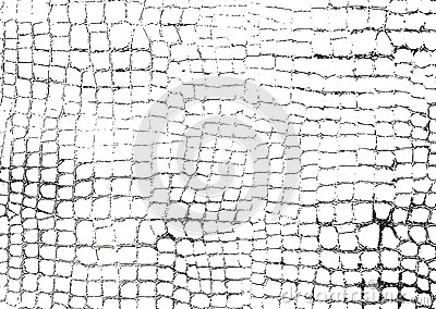 Distressed overlay animal skin texture Vector Illustration