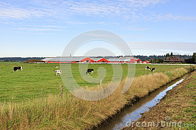 Ditch In A Farm Field Royalty Free Stock Photography - Image: 27955947