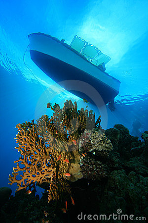 Free Dive Boat Above Coral Reef Royalty Free Stock Photos - 12968958