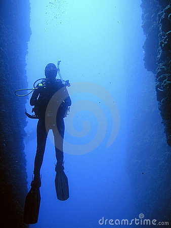 Dive in canyon