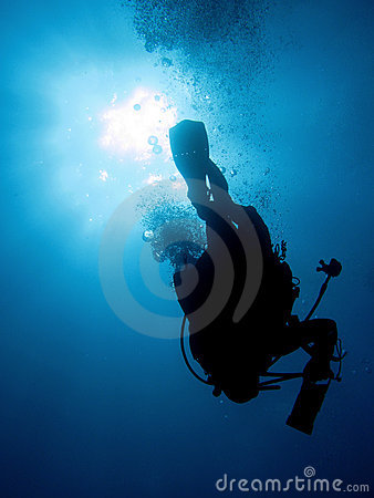 Free Diver Stock Photography - 10803842