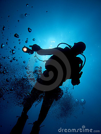 Free Diver Stock Photography - 6821872