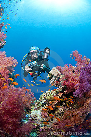 Diver with camera, underwater photo, Red Sea