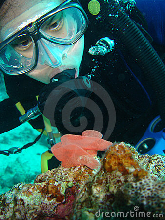 Free Diver Inspects Nudi Eggs Stock Photo - 599650