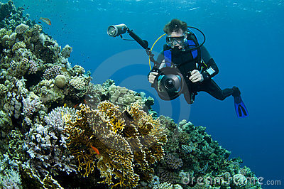 Diver photographing coral reef