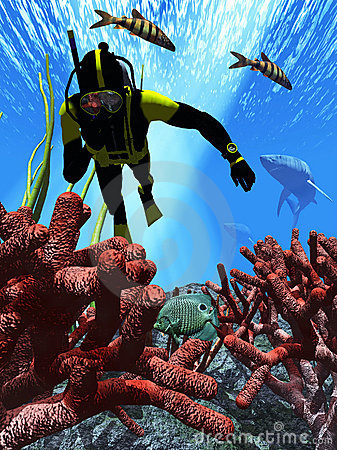 Diver pursued by sharks