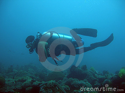 Diver in sabang bay