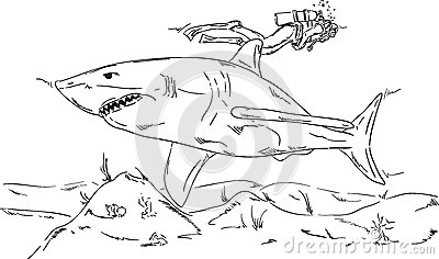 Diver with a shark
