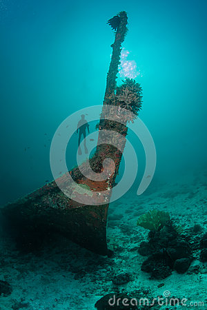 Diver and a sunken wreck
