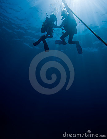 Free Divers On Rope Stock Images - 11470814