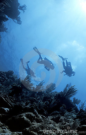 Free Divers Return From Deep Royalty Free Stock Photography - 1278477