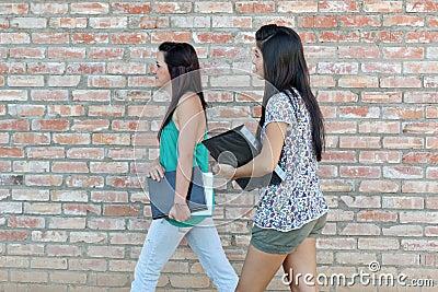 Diverse Teens at School