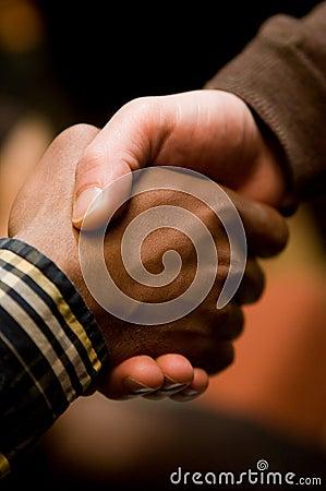 Diversity Handshake