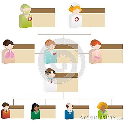 Diversity Organizational Chart - 3D Healthcare