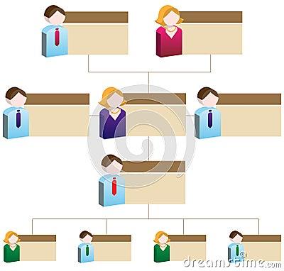 Diversity Organizational Chart