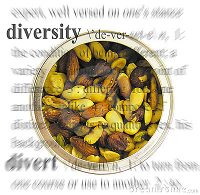 Diversity Theme