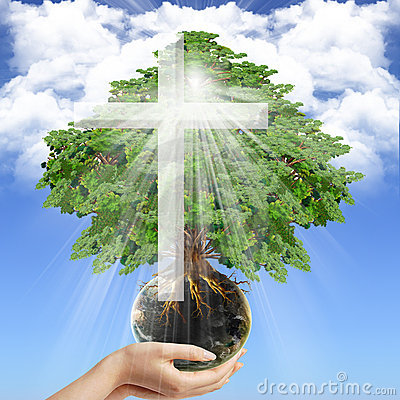 The Divine Cross-1