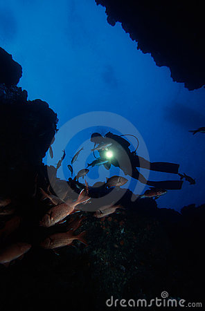 Free Diving Under Water Royalty Free Stock Photo - 1452885
