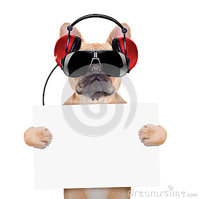 Free Dj Disco Dog Stock Photo - 46542480