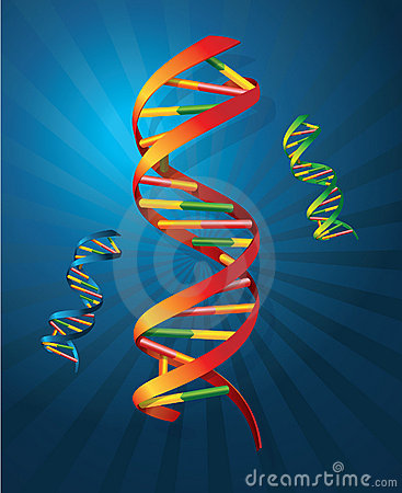 Free DNA Royalty Free Stock Photography - 19910487