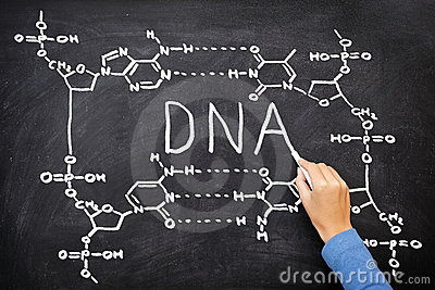 DNA blackboard drawing