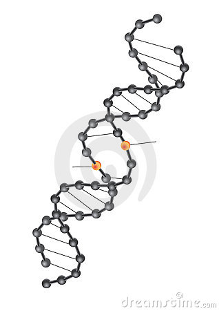 DNA break - vector
