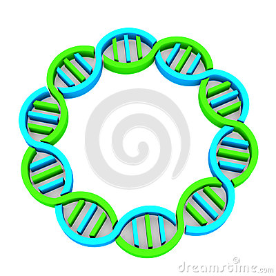 DNA chain in 3d