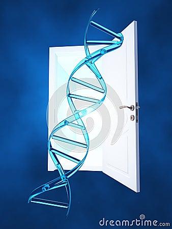 DNA Doorway